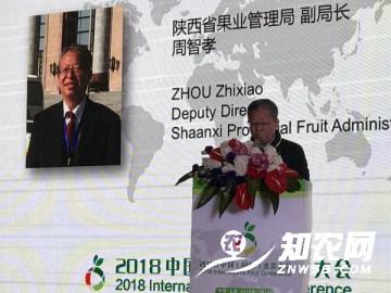 2018中国(国际)水果大会在上海隆重召开